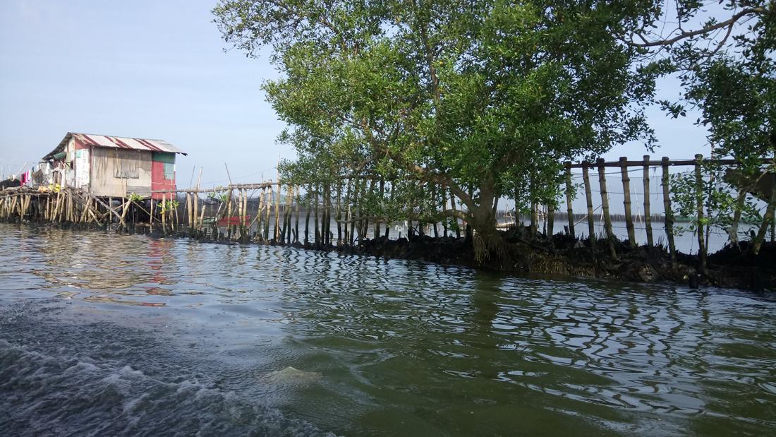 Press Release: 'Bulacan Aerotropolis' threatens marine