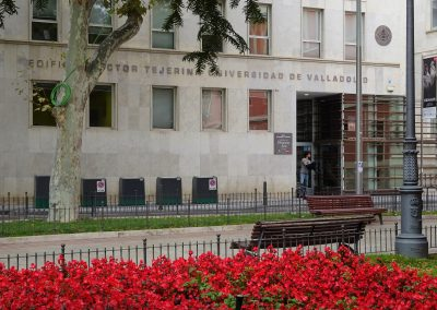 University of Valladolid – GEEDS