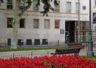 Universidad de Valladolid (GEEDS)